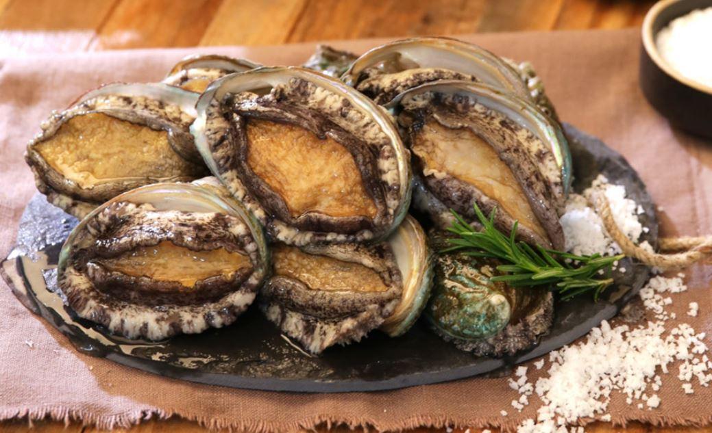 Fresh Raw Abalone from AnyWay Korea