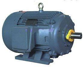 NEMA Standard High Efficiency Three-phase Induction Electric Motor