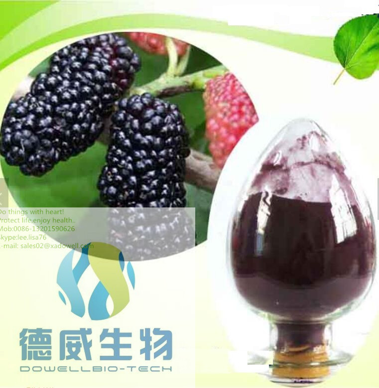 Botanical Extract Mulberry fruit P.E.