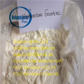 Methenolone Enanthate,Primobolan,CAS303-42-4,98% Methenolone Enanthate Powder on sale