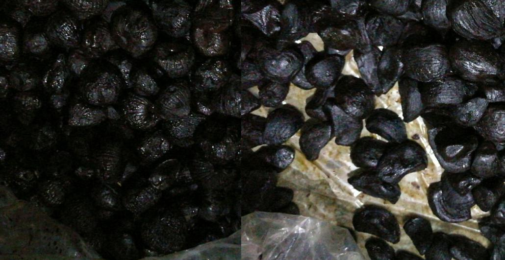 fresh black garlic clove