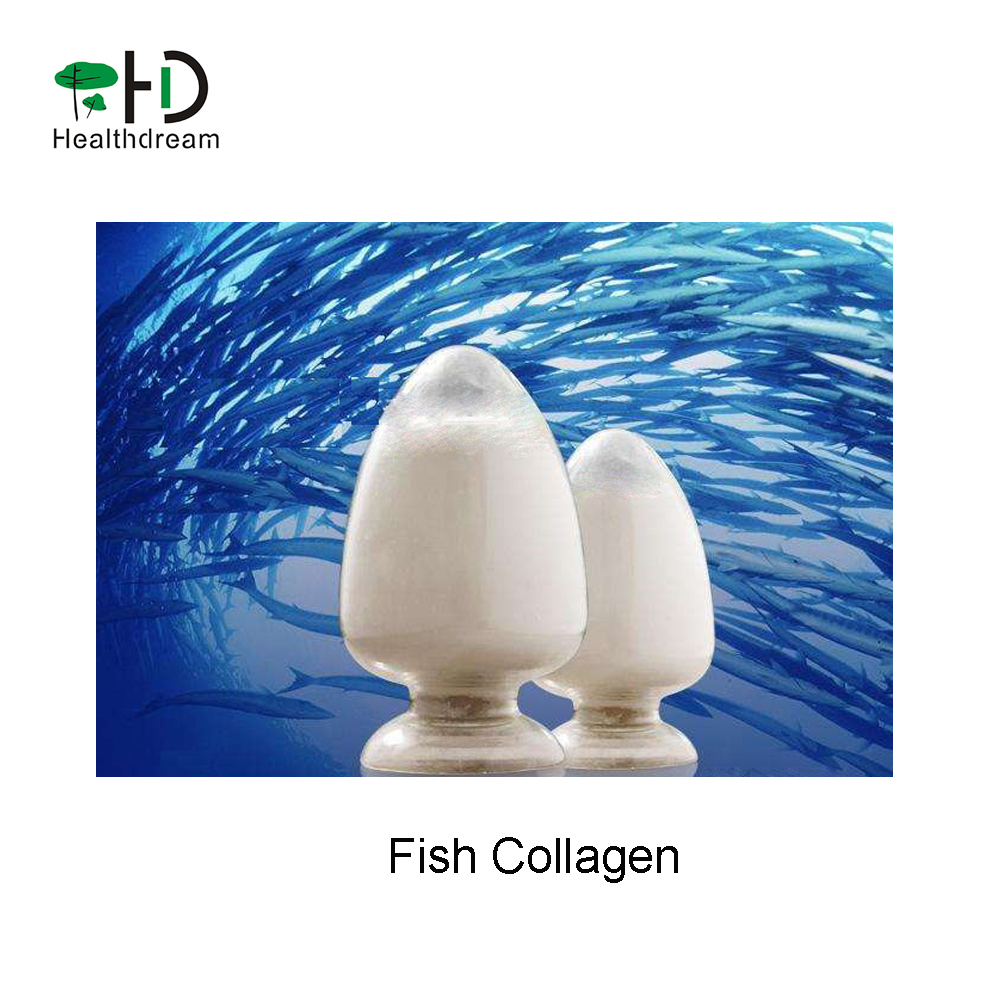 Fish Collagen powder