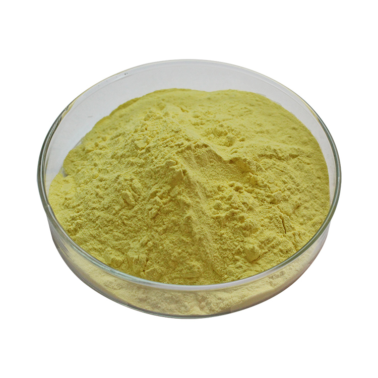 Trenbolone Hexahydrobenzyl Carbonate Steroid Powder for Muscle Bodybuilding CAS NO.23454-33-3