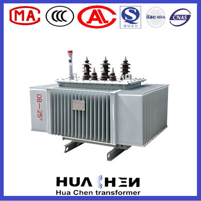 Sh15-M Sealed Amorphous Alloy Oil Immersed Power Distribution Transformer