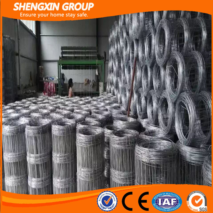China supplier electric fence netting/sheep fence net/farm electric fence
