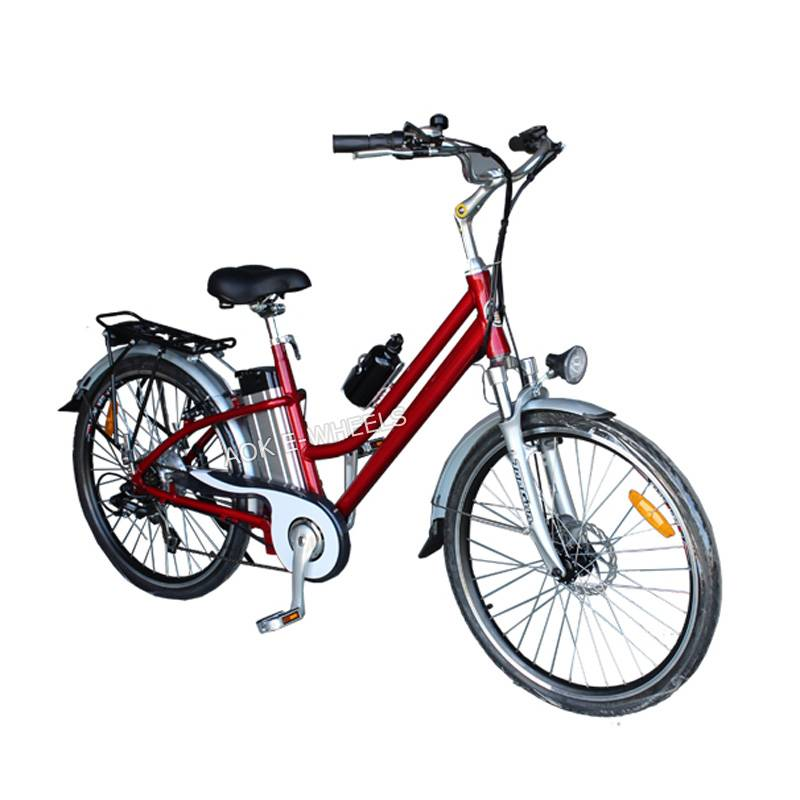 250W Lithium Battery City Electric Bike (TDE-038B)