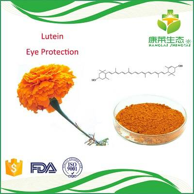 Marigold Flower Extract Lutein Powder 98%