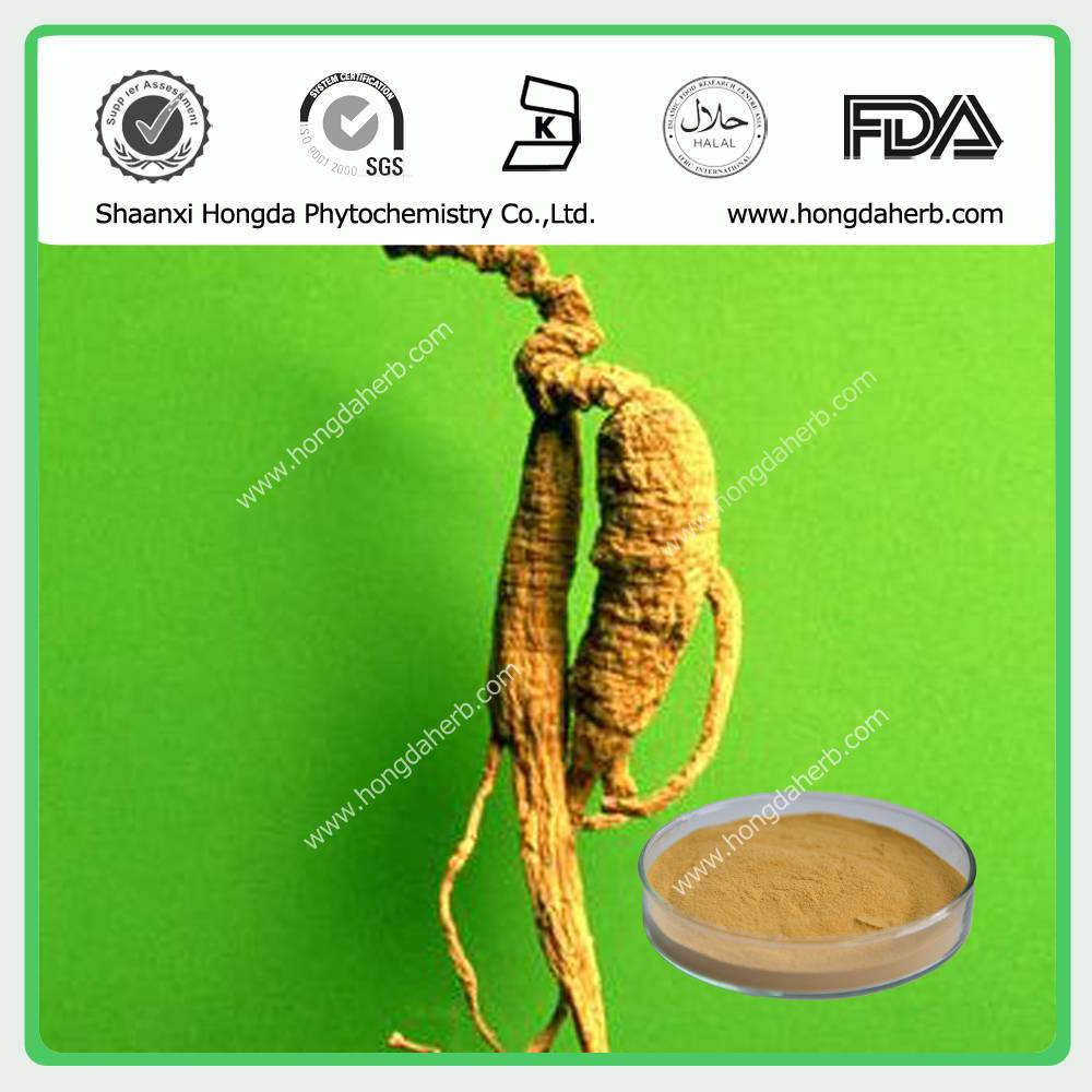Ginseng Root Extract 80% Panaxoside/Ginsenoside