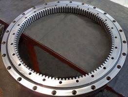 slewing ring bearing2DI.081.00