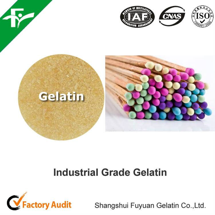 high quality best price Industrial grade gelatin for match heads