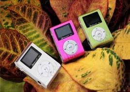 MP3 with LCD display, FM