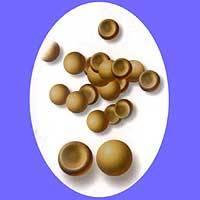 artemia cysts((brine shrimp eggs)