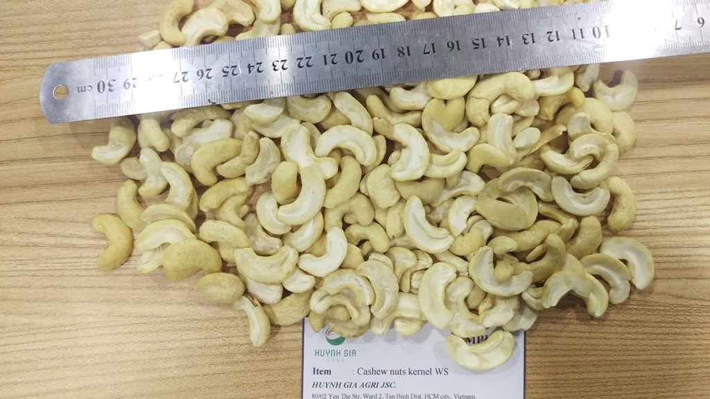 cashew nuts LP
