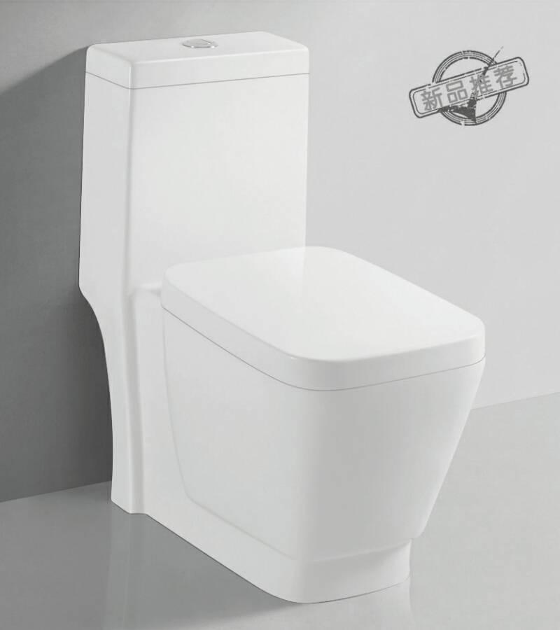 TA-8161 Sanitary Ware Dual Flush Siphon Jet Flushing One-piece Ceramic Toilet