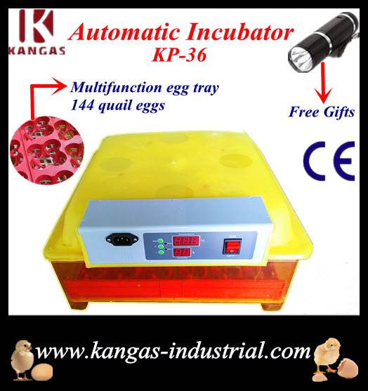 CE- Proved Farm Family Use Poultry Incubator for Sale (KP-36)