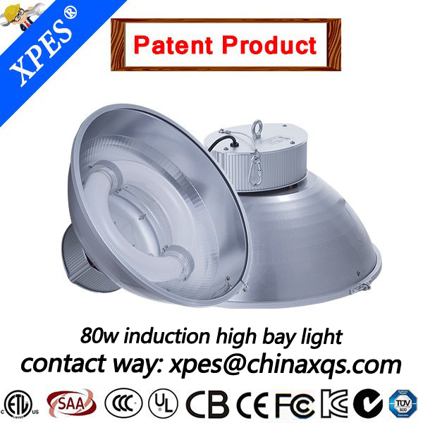 Cold Tolerant induction lamp Low Energy Consumption Energy efficient light replace LED