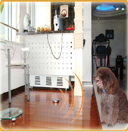 invisible pet eletric fence/dog fence system
