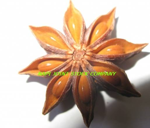 Vietnam Star Aniseed Best Price