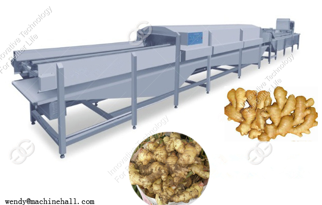 ginger processing machinery washing and cutting machine for sale