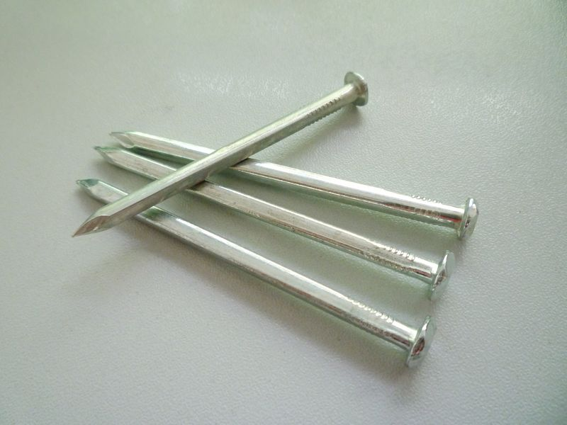 good quality galvanized/polished square boat nails hot sale in China