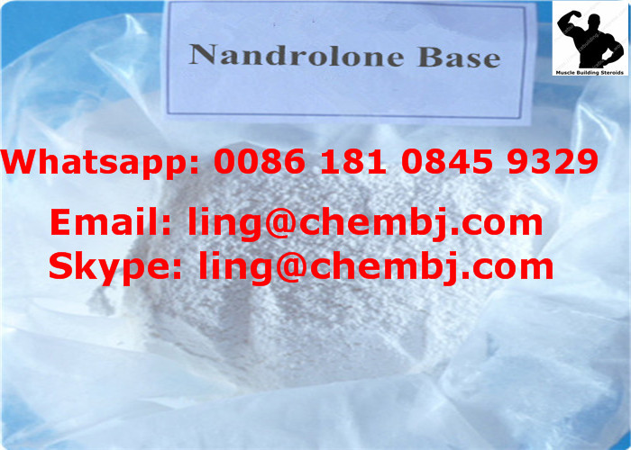 Nandrolones Base for muscle growth appetite stimulation, bone density