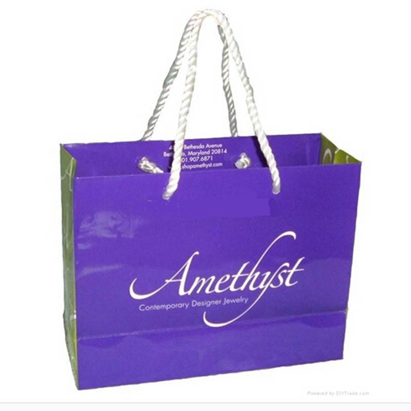 Luxury fashion paper bag for apparel