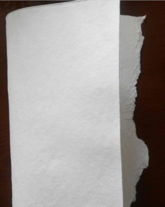 bleached softwood kraft pulp