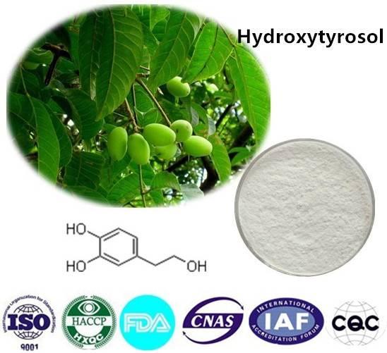 Hydroxytyrosol 98% HPLC CAS NO:10597-60-1 10g/bag