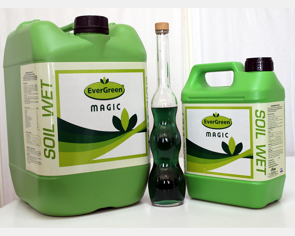 Evergreen Magic Liquid Fertilizer for Grass