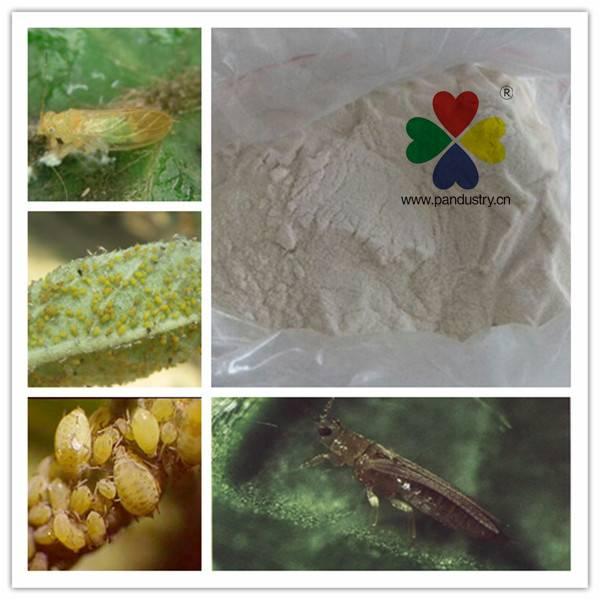 Kill Plant hopper Nicotinamide Thiamethoxam Insecticide Actara 98%TC 25%WDG
