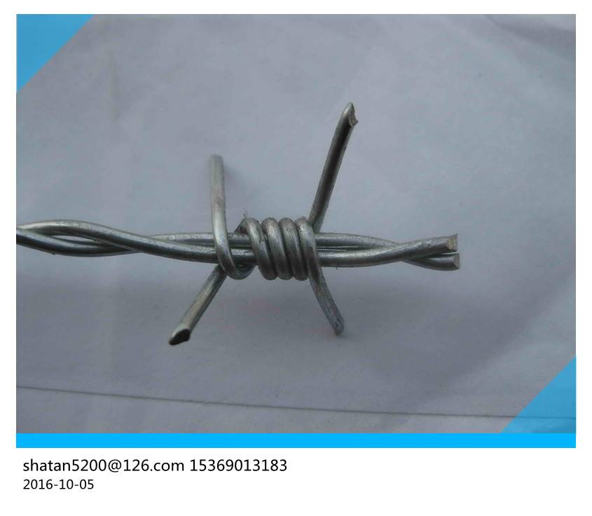 Single and double strand barbed wire 2.8mm line barbed wire