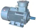 Explosion Proof Motor(Exdiibt4, Exdiict4, ExdI)