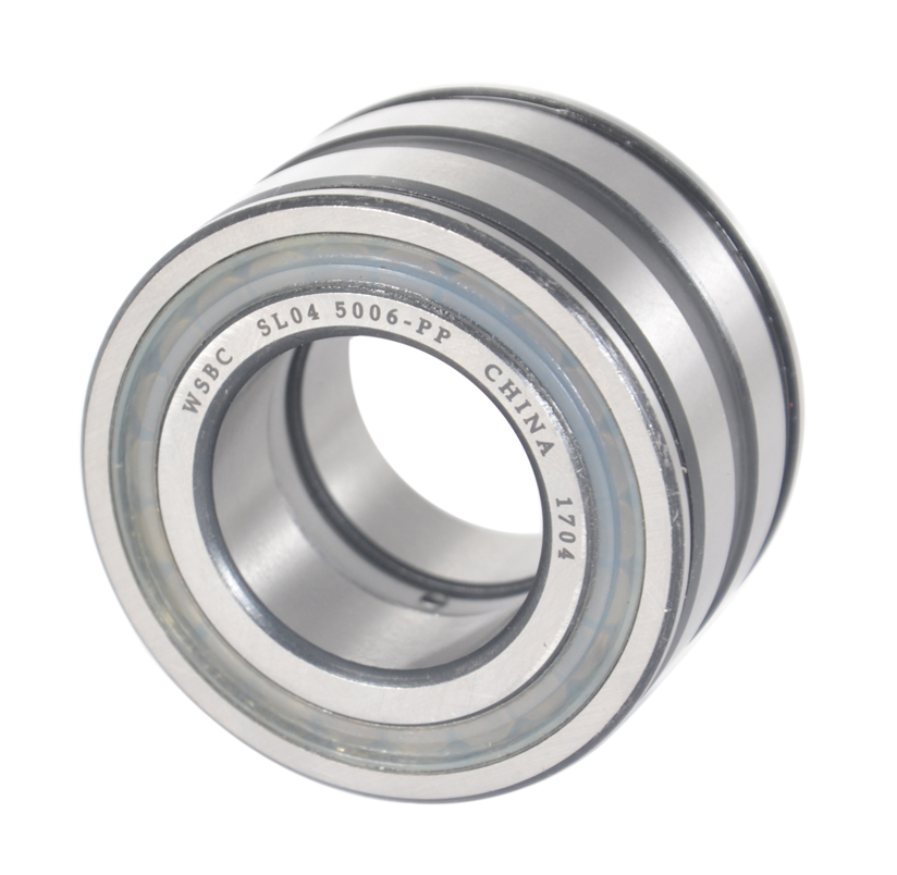 Sealed double row full complement cylindrical roller bearings SL04 5009 PP