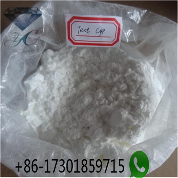 White Powder Testosterone Cypionate Muscle Building Steroids Hormone For Injection