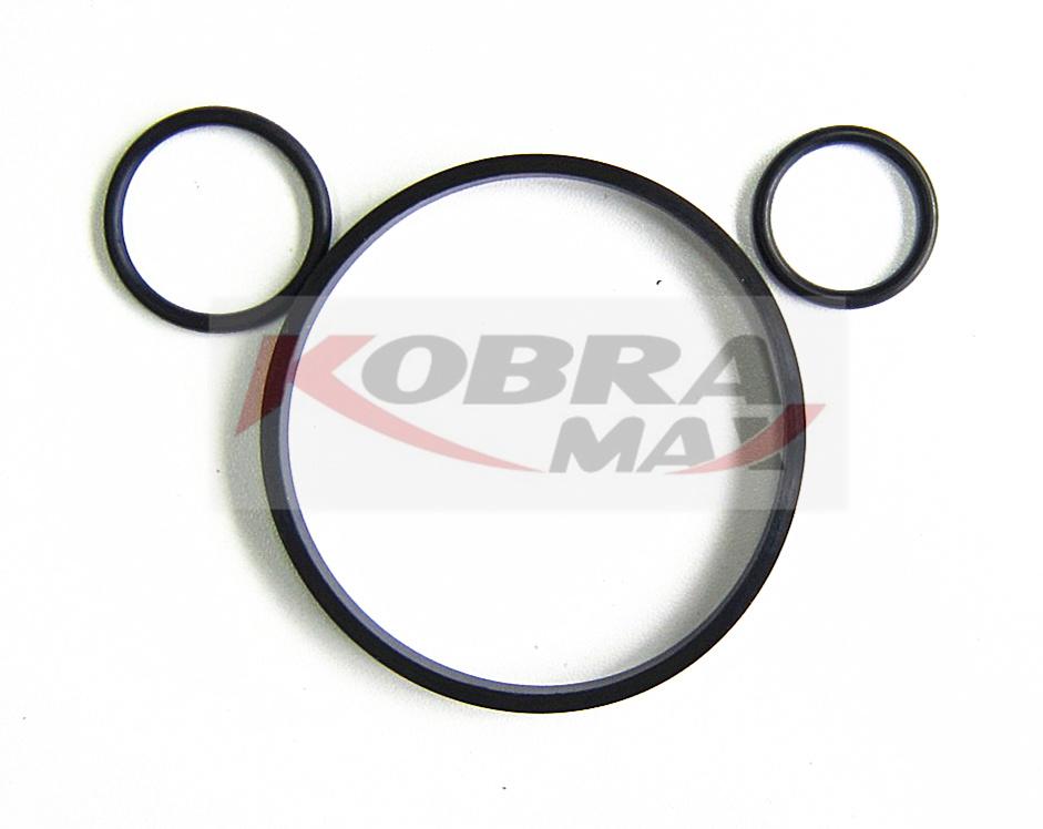 KOBRA-MAX GASKET 7701473629