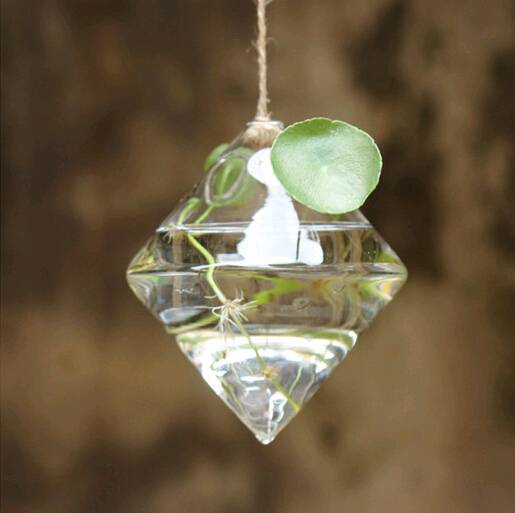 hanging glass terrarium hanging glass vase