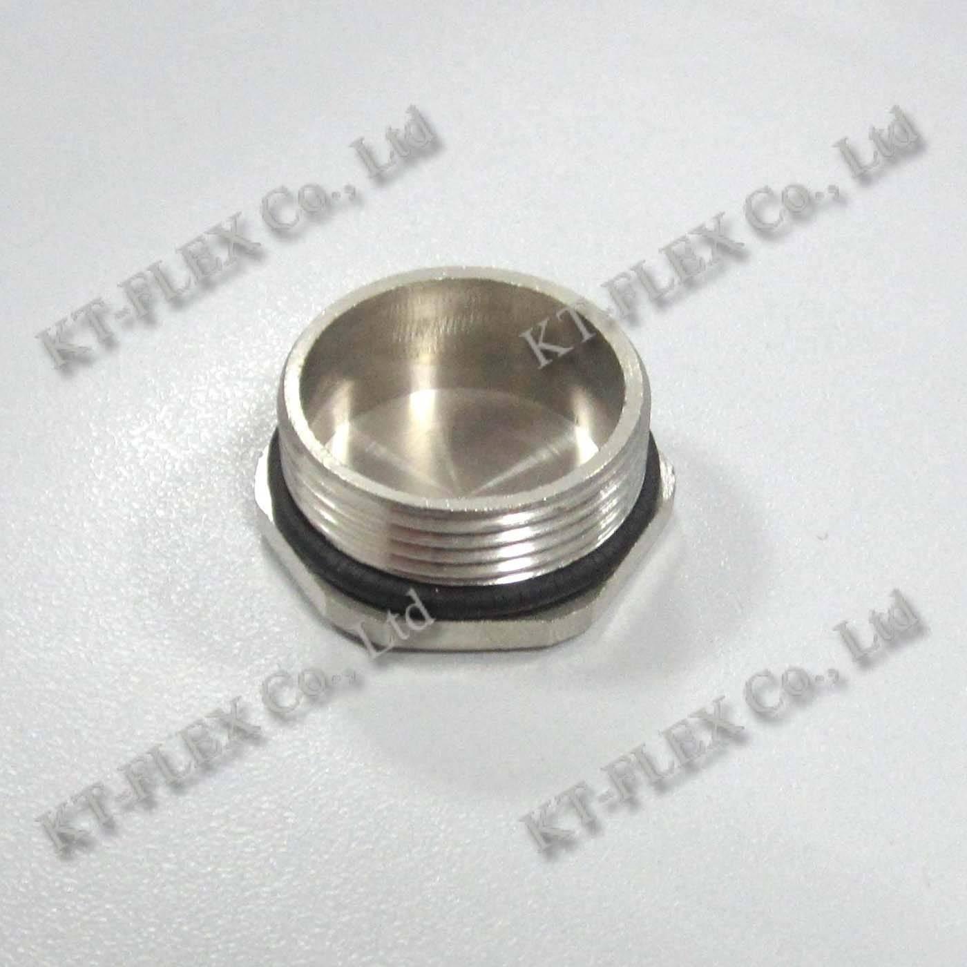 M25 Brass Hex Plug