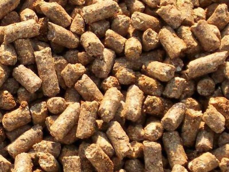 Wheat bran from Russia