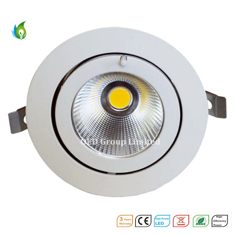 50W Aluminum Alloy COB LED Trunk Ceiling Light with Ce RoHS Certificate From China Supplier