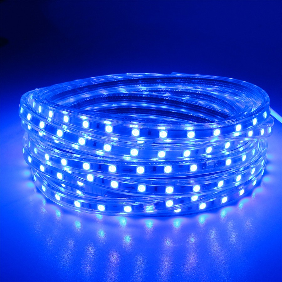 AC220V 5M LED Strip SMD5050 White/Warm White Flexible LED Light waterproof LED ribbon for Garden Kit