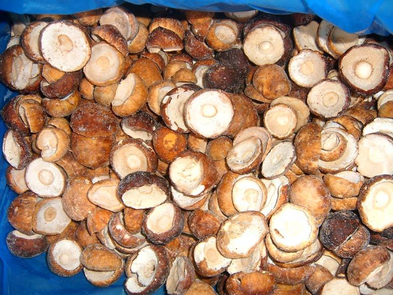 2013 New Crop Frozen Boletus Edulis(only caps)