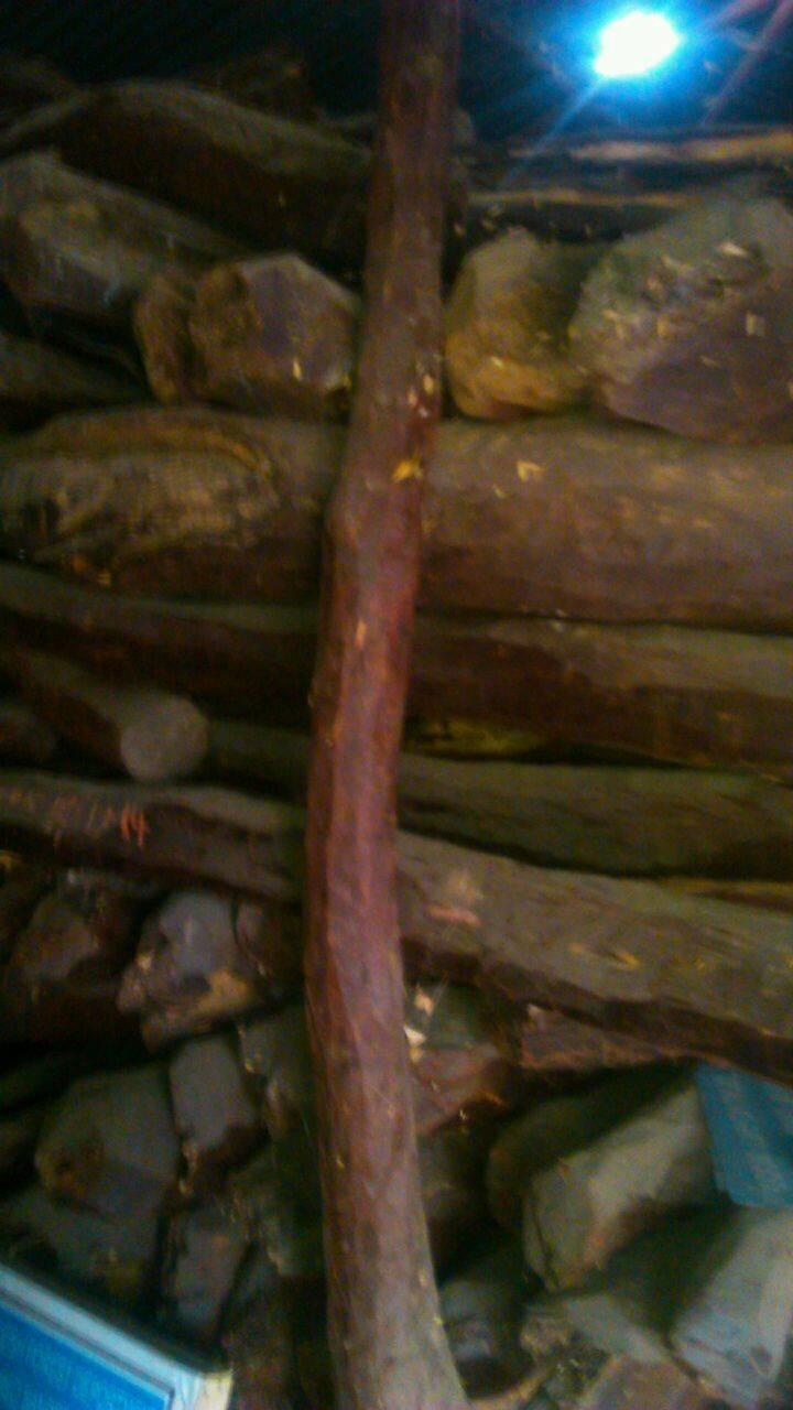 INDIAN RED SANDER WOOD LOGS
