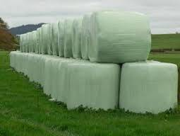 Alfalfa Hay bales fOR sALE GRADE A