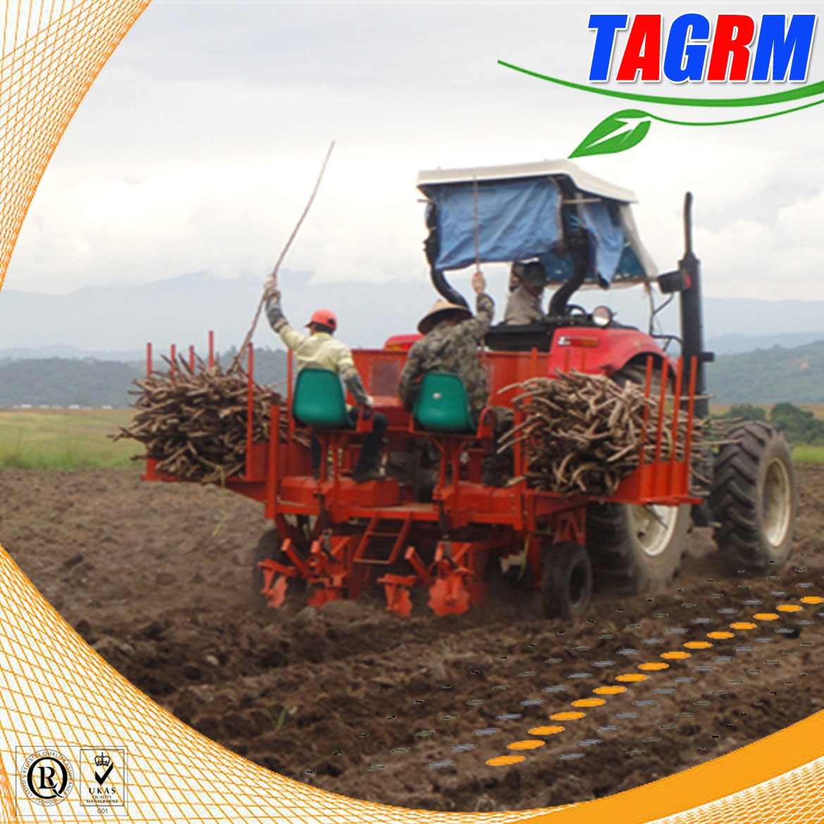 High technology tools of cassava seed planter/2 row flat type cassava planting machine