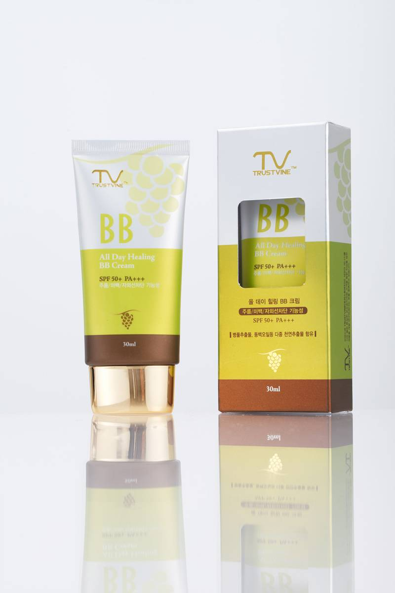 All Day Healing BB Cream