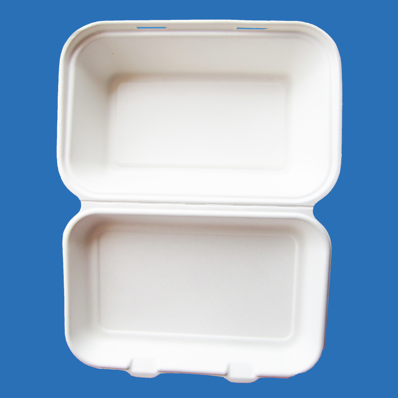 """sugarcane container disposable lunch box 7""""5""""3"""""""