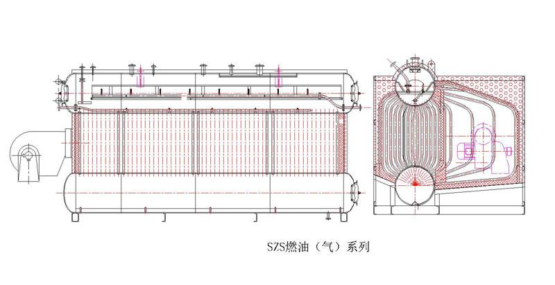 Oil (gas) fired steam boiler