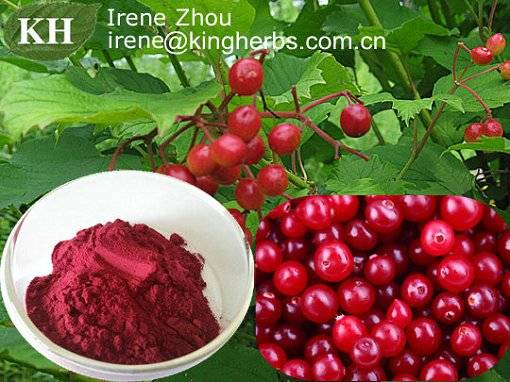 Cranberry Extract, Anthocyanins Proanthocyanidins