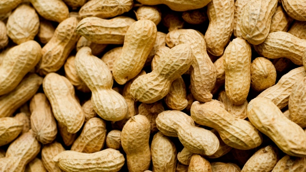 Peanuts (Groundnuts) - Nigerian Origin-Available for sale