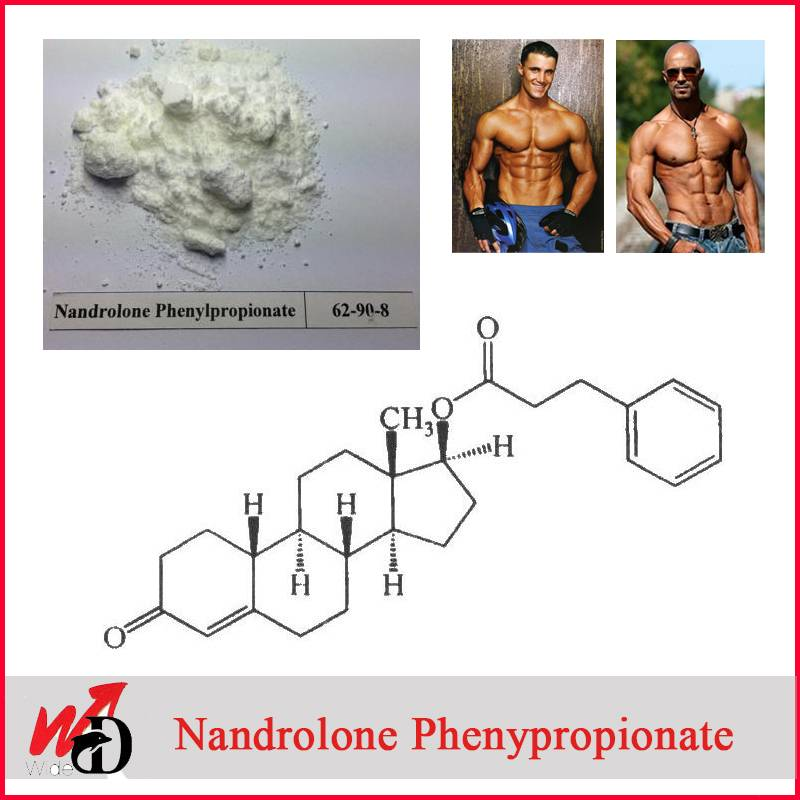 USP30 Standard Nandrolone Phenypropionate / Npp for Bodybuilding